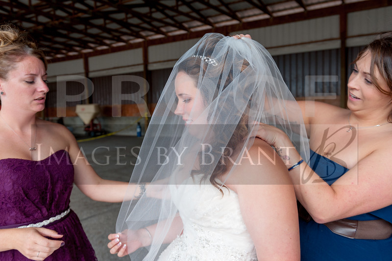 Nisqually_Springs_Yelm_wedding_photographer_0678D2C_1703