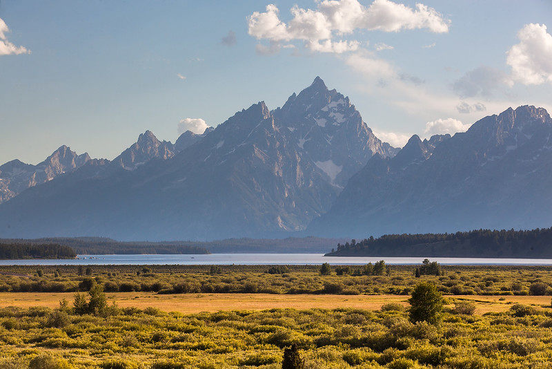 Meadow-Tetons