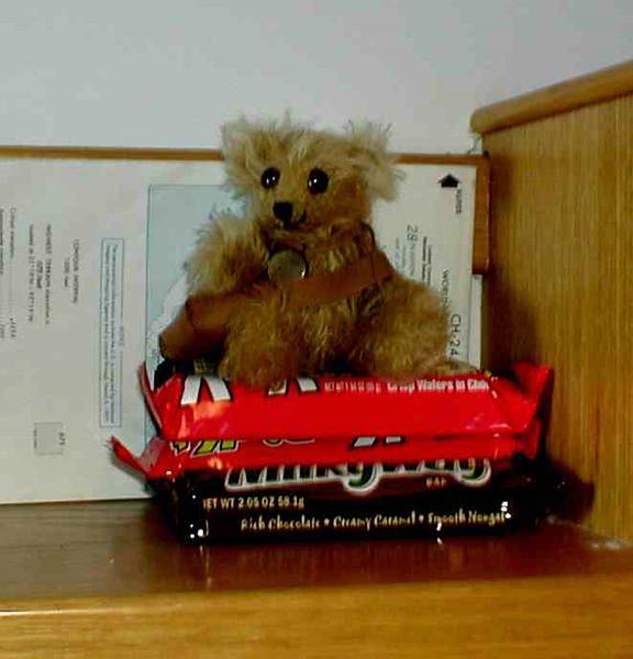 ROBear, miniature mohair guardian of offshore supplies