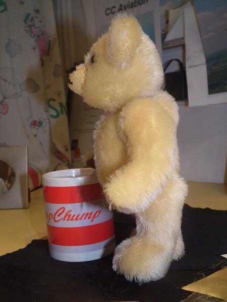 Bear for Chris