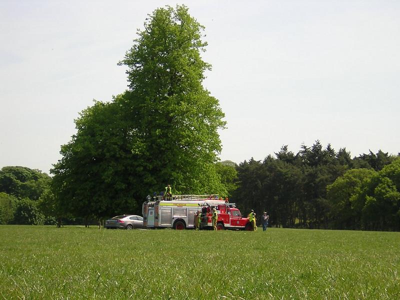 Henham Park 10 May 2009.  Wings and Wheels