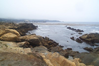 Point Lobos (Jenny)