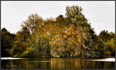 Herfstkleuren/Autumn colours