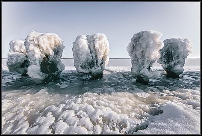 IJssculpturen/ Icesculptures
