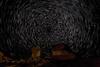 Startrails over Mushroom Rocks