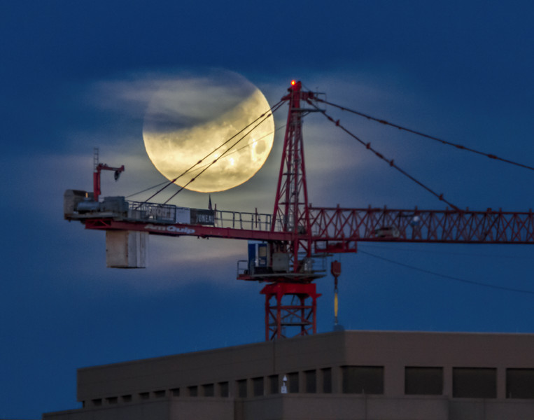 Eclipsing moon and crane