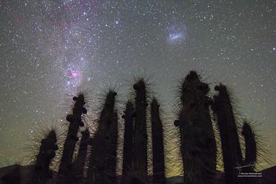 The Large Magellan Cloud