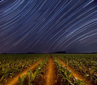 Corn Stars