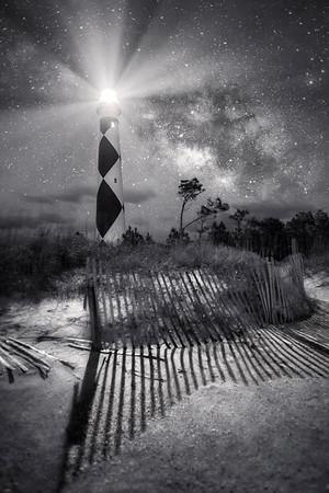 Black & White Nights