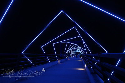 High Tressel Trail Bridge
