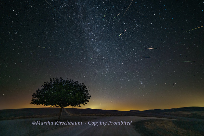 Each individual meteor was combined in a layer and rotated according to the Perseids radiant point.