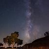 Milky Way - Sculpterra Vineyards