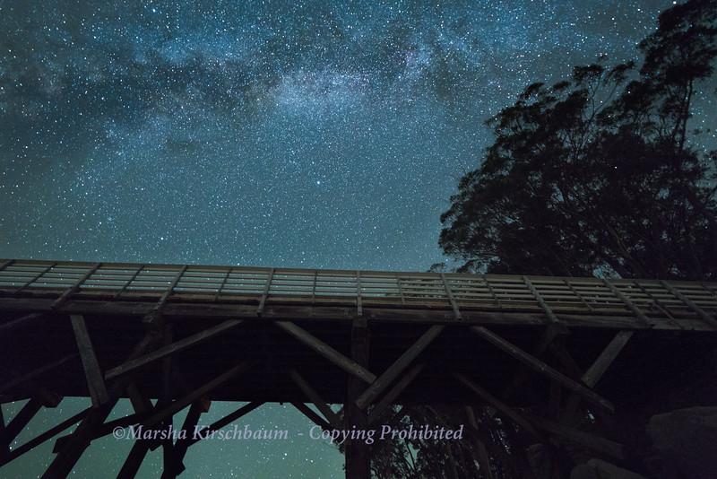 Looking Up - Milky Way