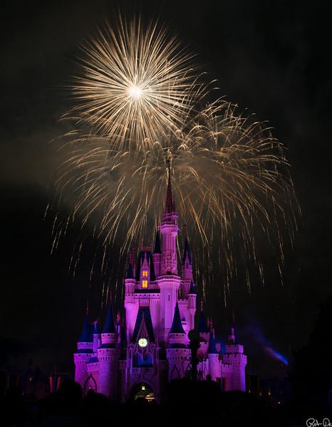 Light Show at the Magic Kingdom