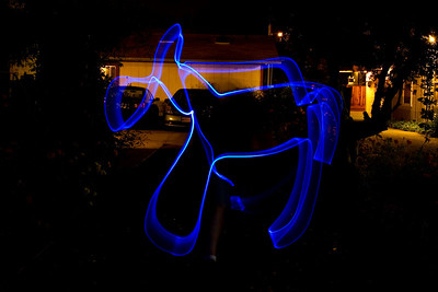 Light painted horse
