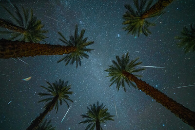 2018 Geminid Rain in the Desert