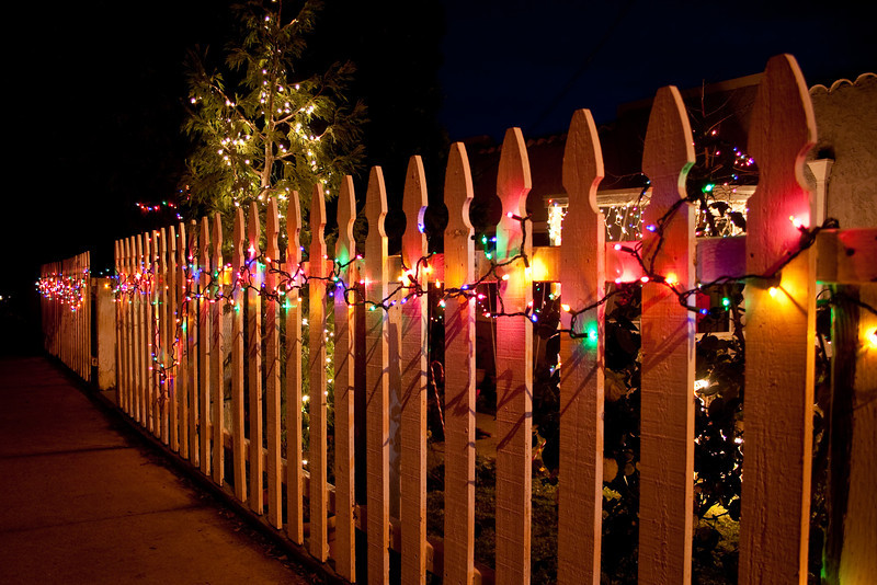 Christmas lights on Bessie's fence.