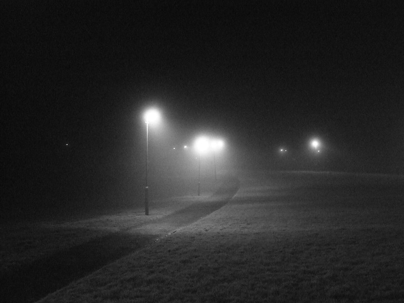 Street lights in the fog