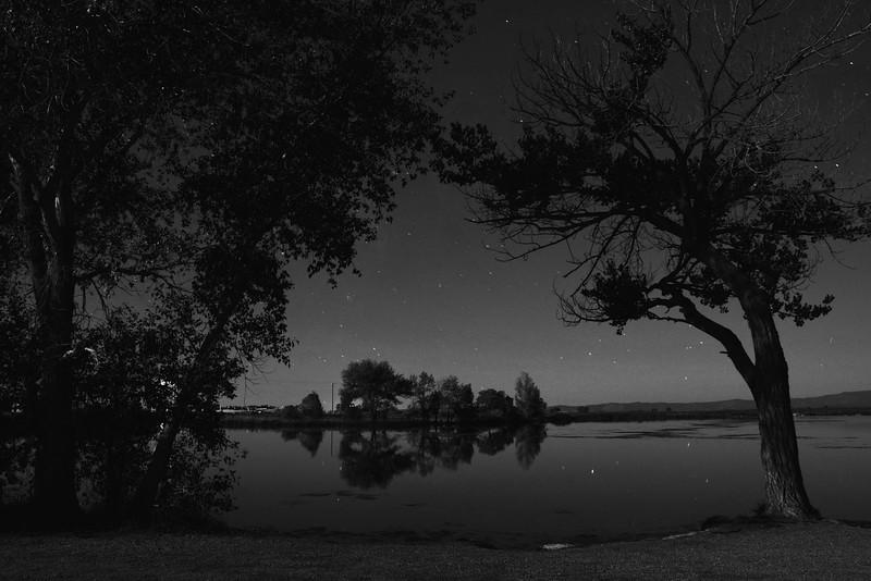 Night at Pastorius in black and white