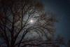 Full moon Shooting Star