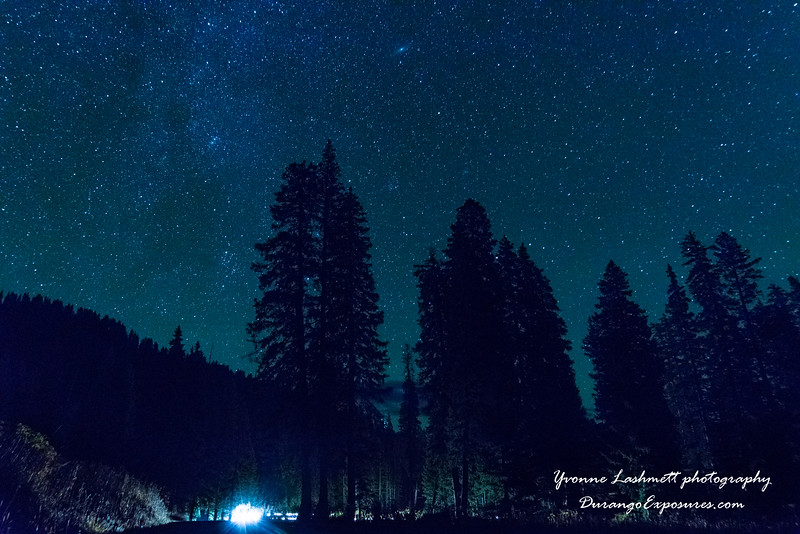 Milky Way above the trees on top of Coal Bank Pass, CO