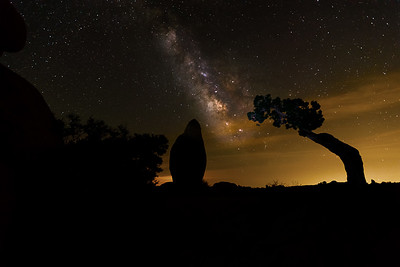 Milky Way over Joshua Tree NP