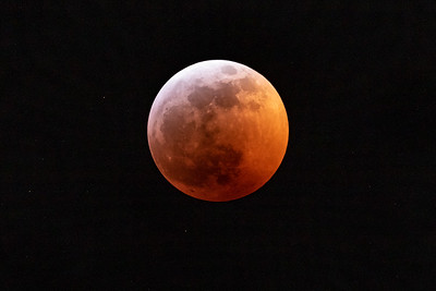 Super Blood Wolf Moon! Don't remember all these moon names when I was younger - I think the Moon has hired much better marketing people since then. Got lucky with some breaks in the clouds tonight...