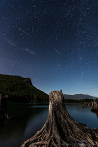 Perseid meteors at Rattlesnake Lake near North Bend, WA. Composite of all meteors captured at this location over a 2-hour span.
