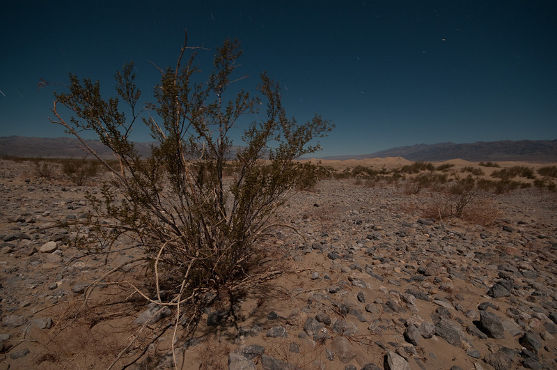 Nighttime landscape in Death Valley, CA