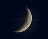 Cresecent Moon
