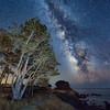 Perseid Meteor at Pebble Beach, Sea Ranch, California