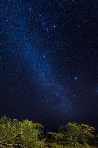 Night sky over Ndutu, Tanzania, East Africa