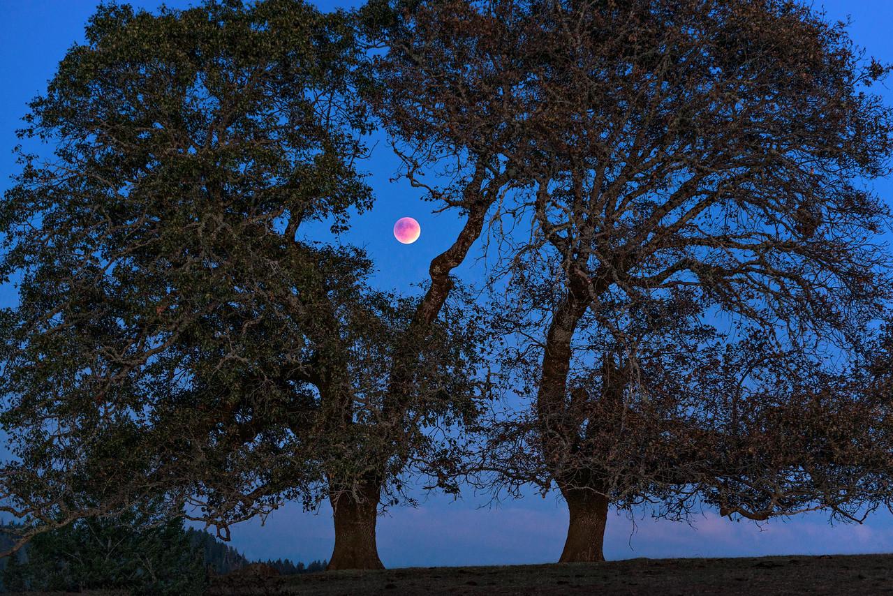 Super Blood Moon, Sonoma County, California