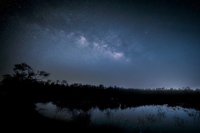 The Milky Way over a marsh with reflected stars in Babcock Wildlife Management Area near Punta Gorda, Florida