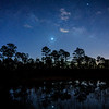 Venus rising below Jupiter over pond and Slash Pine trees with reflection in Babcock Wildlife Management Area near Punta Gorda, Florida
