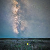 The Milky Way and meteor over wild sunflowers in the Sandhills of Northern Nebraska south of Valentine.