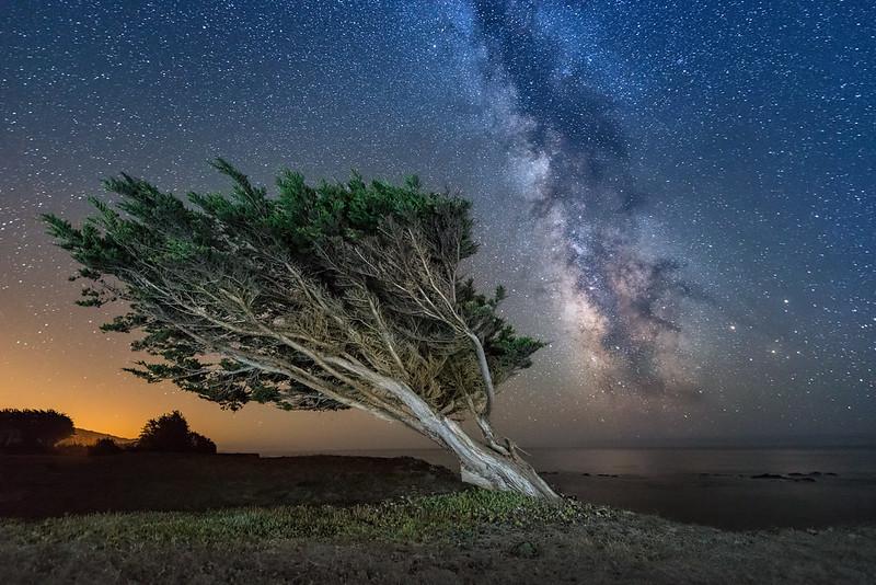 Cosmic Wind, Sea Ranch, California