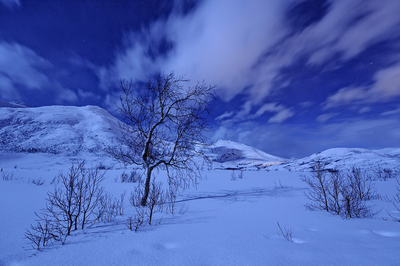 Moonlit Night in Norway