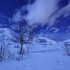 Moonlit Night in Norway