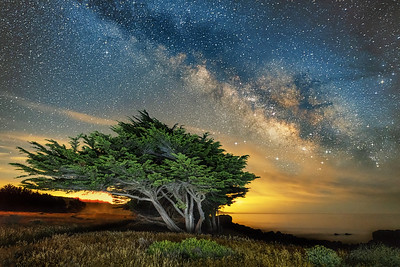 Galactic Sky, Sea Ranch, California