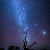 The Southern Hemisphere night sky with the Milky Way and Magellanic Galaxy clouds, Ndutu, Tanzania, East Africa