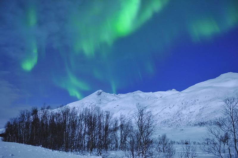 Northern Lights Near Tromso, Norway