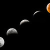 The Super Blood Wolf Moon and Total Lunar Eclipse on January 20-21, 2019, near Punta Gorda, Florida