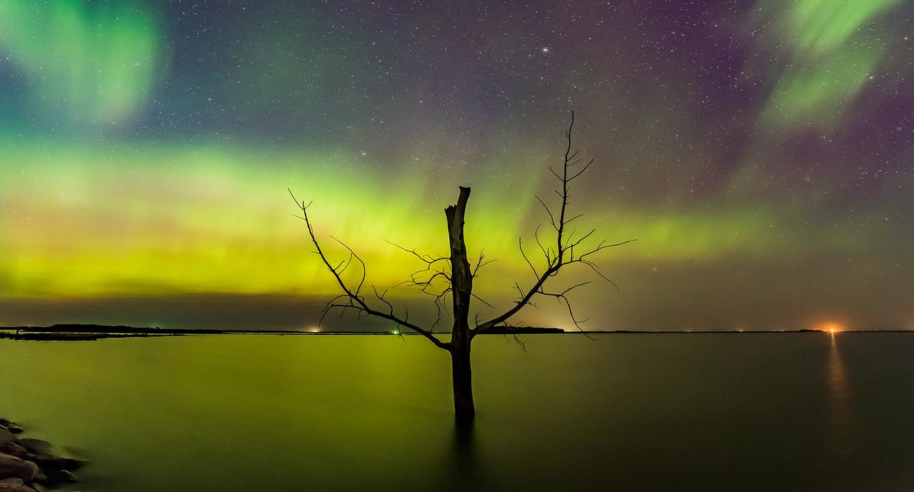 Harriet Lake Aurora 1.1