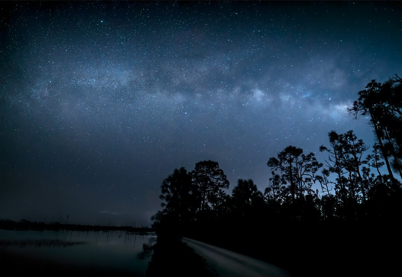 Road to the stars. The Milky Way over two-track road beside marsh at Babcock Wildlife Management Area near Punta Gorda, Florida.