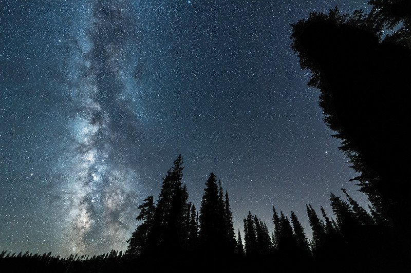 The Delta Aquariids meteor shower and Milky Way over the Gifford Pinchot National Forest near Mt. Adams, Washington State