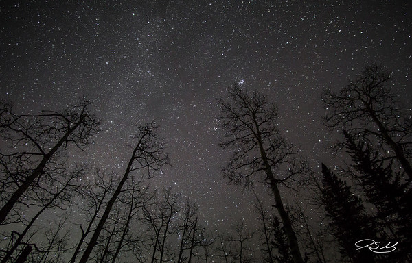 Stars Outside Canmore