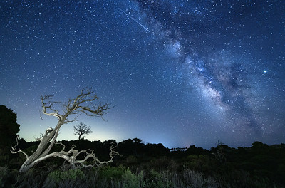 Manchester Milky Way, California