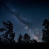 The Milky Way over pine trees along the shore of Lake Michigan in Wilderness State Park near Mackinaw, Northern Michigan