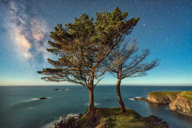 Moonlight & Milky Way, Gualala, California